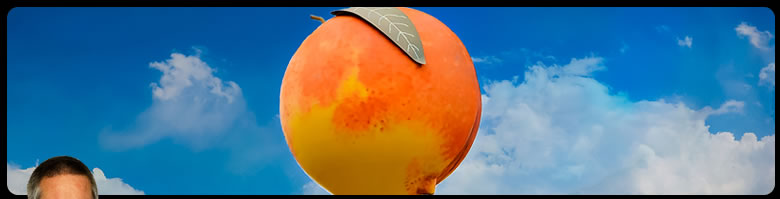 Image of a peach close up